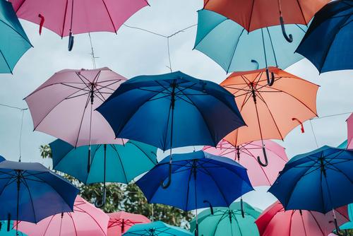 A myriad of umbrellas